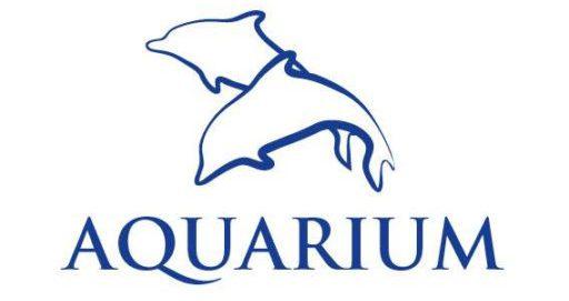 Basen Aquarium